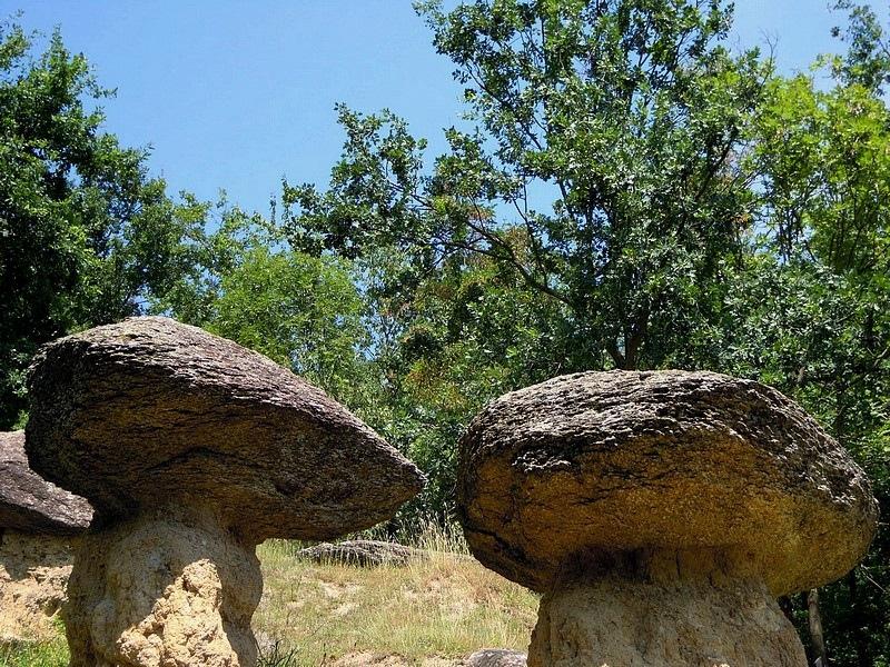 Nelle valli cuneesi dove vivono le fate leggende miti e - Cimici dove vivono ...